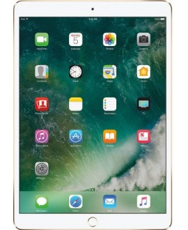 Apple iPad Pro 12.9 Wi‑Fi + Cellular 256 Gb Gold - фото 1