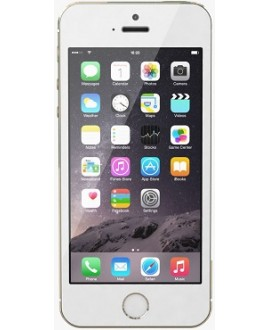Apple iPhone 5s 64 Gb Gold - фото 1
