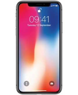 Apple iPhone X 64 Gb Space Gray - фото 1